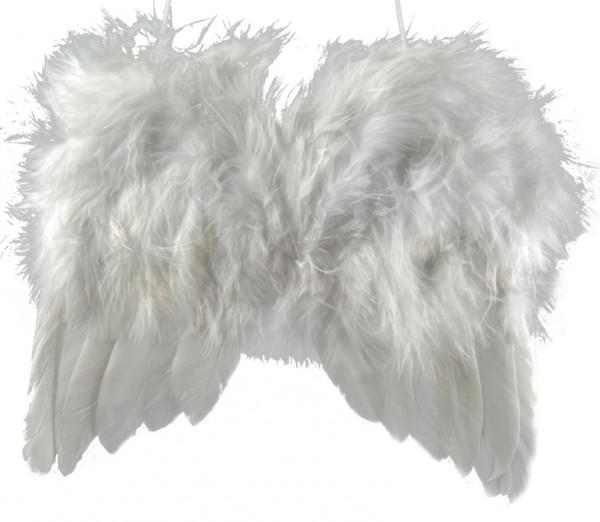 Flügel aus Federn Maxi (18 x 15 cm)